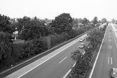 Frankenschnellweg / Leiblsteg,  2010