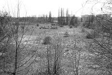 The Deep Field,  2010