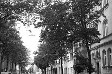 Schweppermannstrasse (2),  2010