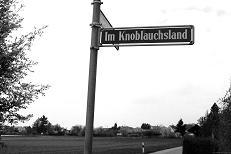 Im Knoblauchsland,  2010