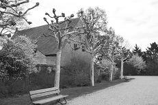 Schlosspark Neunhof,  2010